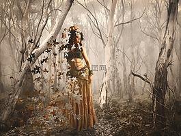 森林的夢想,森林,女子
