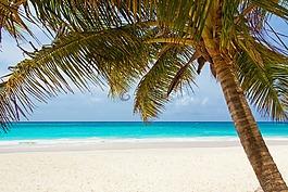 海滩,美丽,蓝色