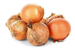洋蔥鱗莖,食品,新鮮
