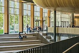 结构,大学,学生