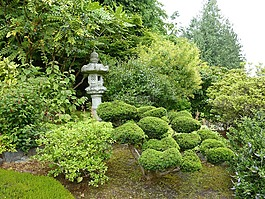 石灯笼,灯笼,日本石灯笼