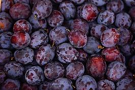 李子,水果,成熟