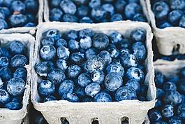 蓝色,蓝莓,美味