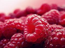 覆盆子,水果,新鮮