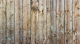 木,紋理,背景