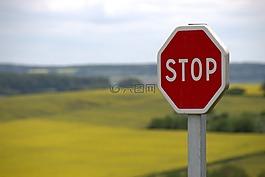 停止,盾,交通标志