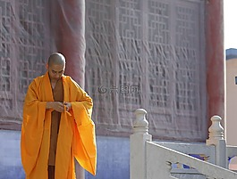 海青,黄色,僧人