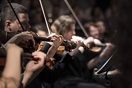 古典音乐,音乐会,特写