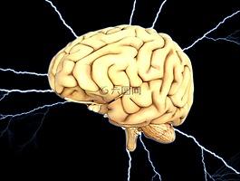 脑,能源,思想