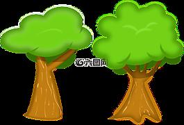 樹,環境,生態