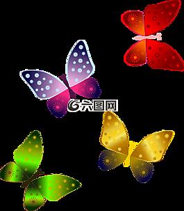 蝴蝶,红蝴蝶,蝴蝶绿