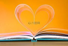 本书,教育,学校