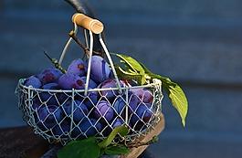 李子,水果,水果篮