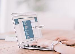 筆記本電腦,手,計算機
