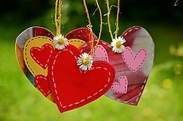 心臟,心,電源線