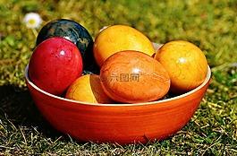 壳,蛋,彩色