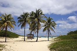 海灘,海,夢想