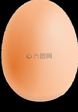 雞蛋,橢圓形,食品