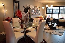 餐廳,客廳,家具