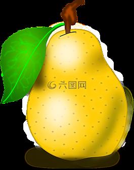 水果,梨,新鮮