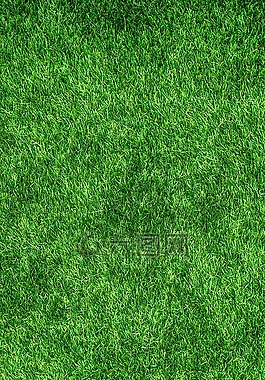 大自然,绿色,抽象