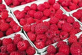 树莓,浆果,水果