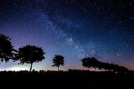 明星,銀河系,樹木
