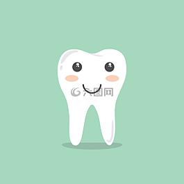 牙齒,卡通,生