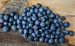 蓝莓,浆果,水果