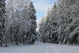 冬季道路,冬季景觀,冬季