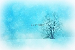 紋理,背景,冬天