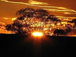 金色的夕陽,云,天空