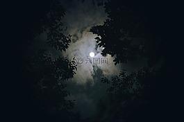 月亮,云,夜景