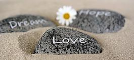 石頭,愛情,夢想