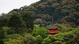 京都,風景,寺廟
