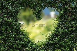 心臟,herzchen,愛情