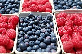漿果,藍莓,山莓