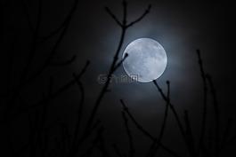 月亮,超級月亮,月光
