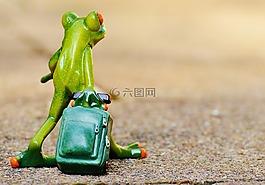 青蛙,告別,旅行