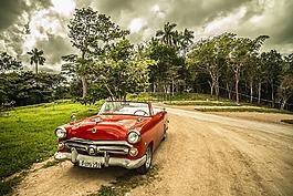 古巴,那輛舊車,森林
