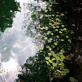 水,河,自然