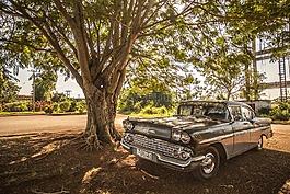 古巴,汽車,林