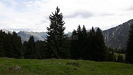 景觀,阿爾高,山