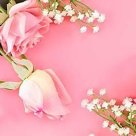 玫瑰花主圖背景