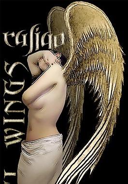 天使翅膀筆刷套裝