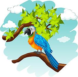 樹上的鸚鵡