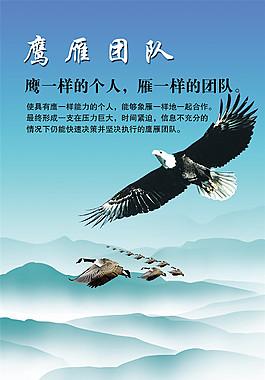 團隊雄鷹企業文化海報
