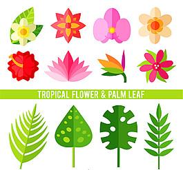 12款熱帶植物花卉和棕櫚葉子矢量素材