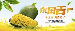 泰國青芒芒果葉子素材