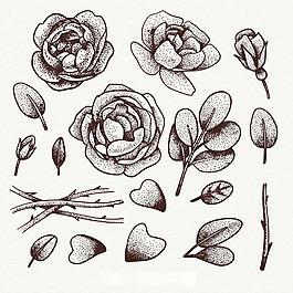 手绘玫瑰叶子插图集合